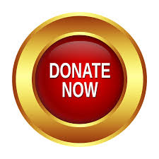 2017 Samanthas House Donate Now button